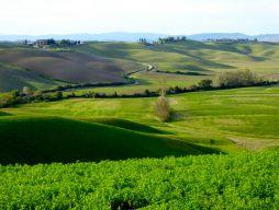 Toscana14