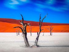 NAMIBIA y SUDÁFRICA